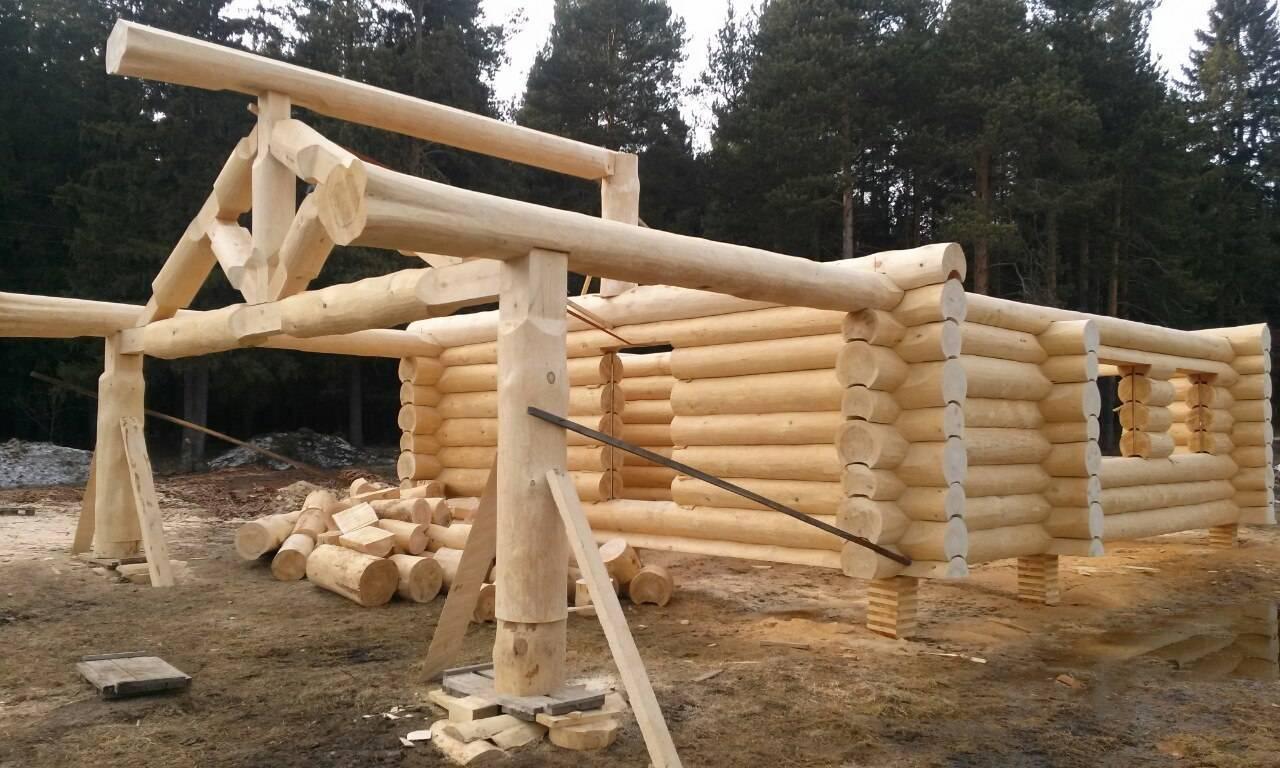 Все о деревянном срубе
