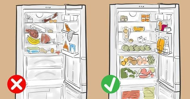 Оптимальная температура в холодильнике: сколько градусов?