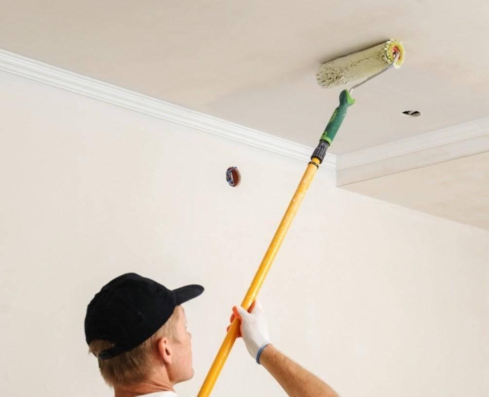 Покраска стен и потолка из гипсокартона своими руками: технология и подготовка