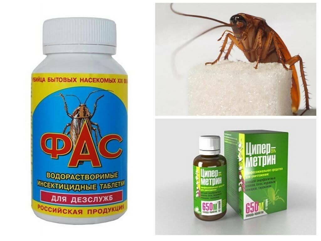 Профессиональные средства от тараканов - лучшие средства и способы травли насекомых