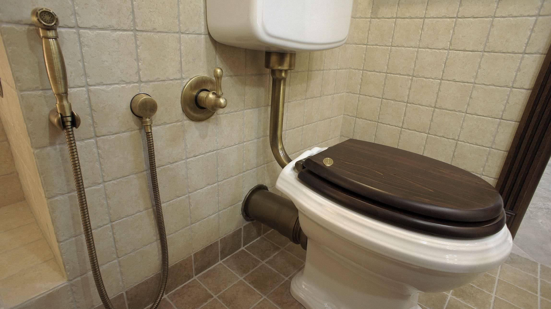 Гигиенический душ для унитаза: обзор разновидностей и правила установки