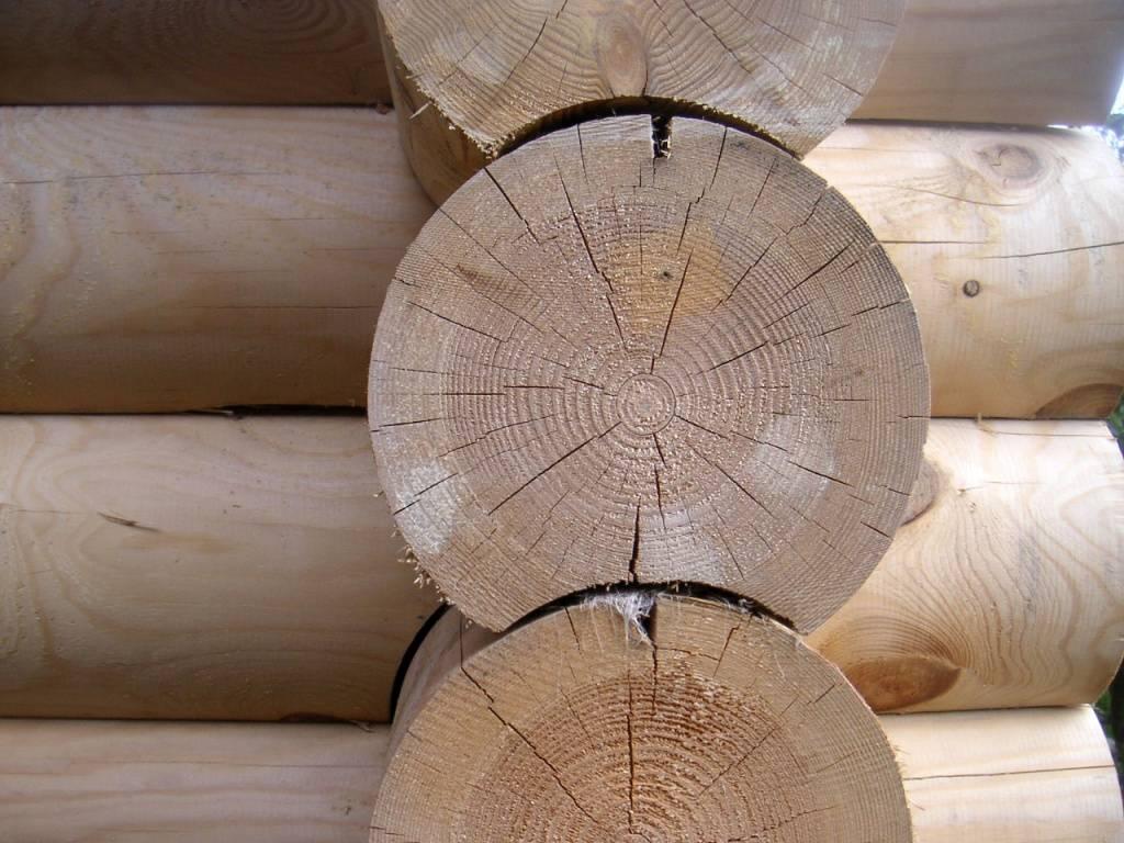 Усадка деревянного дома: некоторые особенности