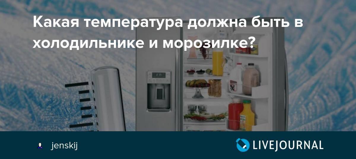 Оптимальная температура в холодильнике и морозильной камере