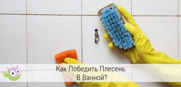 Чёрная плесень в ванной как избавиться