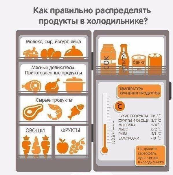 Какая должна быть температура в холодильнике, как определить, как выставить, таблица температурных режимов для некоторых продуктов.