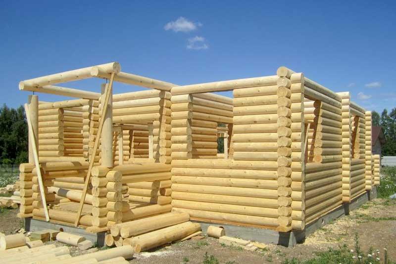 Дом из рубленного бревна: строительство деревянного сруба из строганного дерева ручной рубки