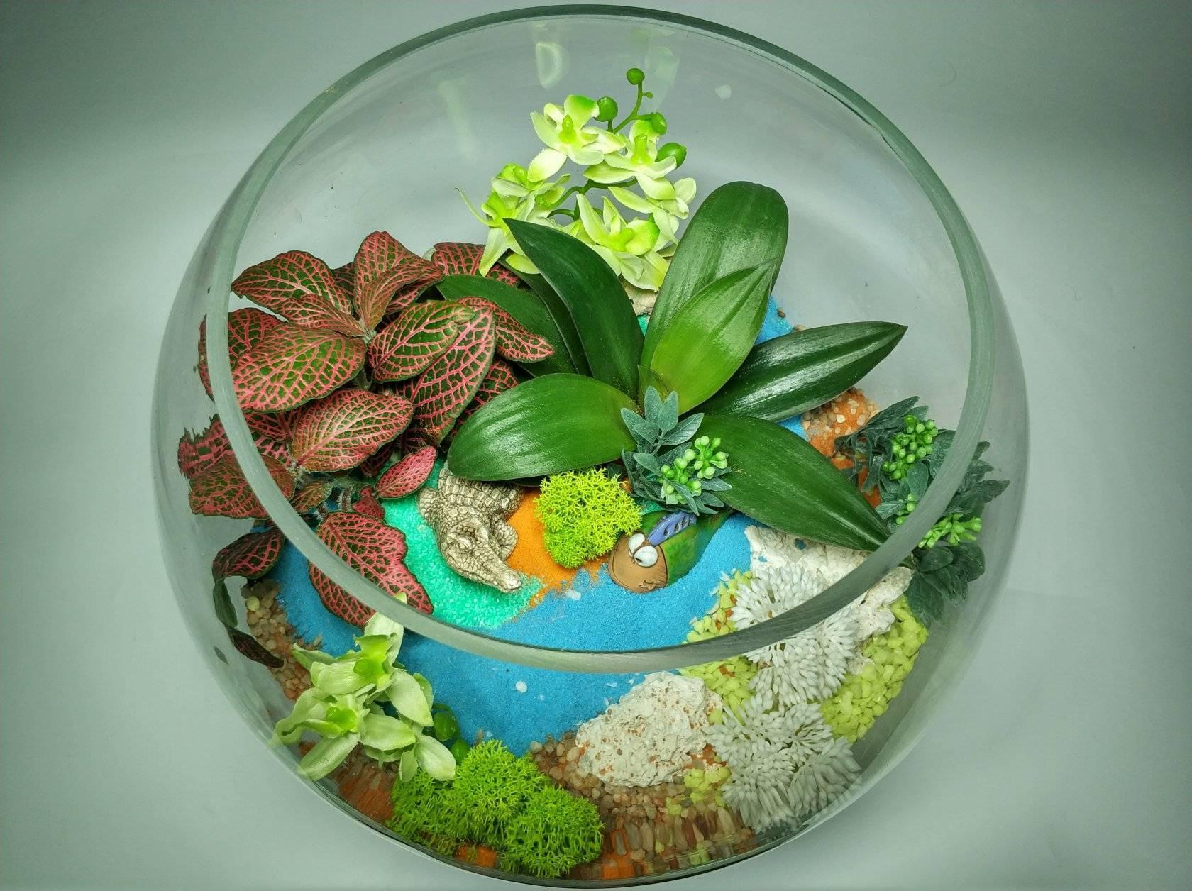 Живой микромир своими руками: делаем флорариумы