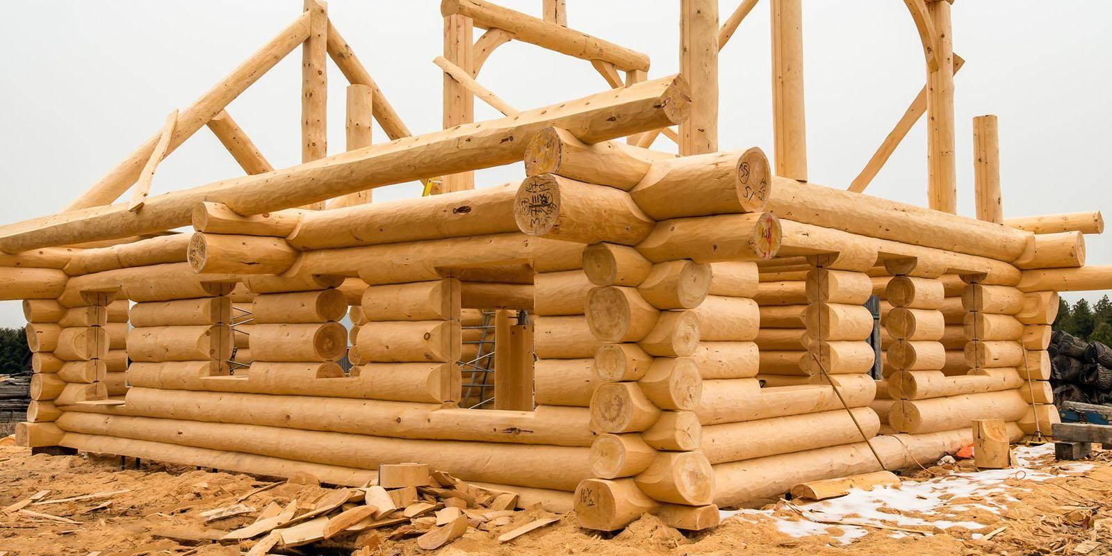 Этапы строительства бревенчатого дома от покупки до крыши