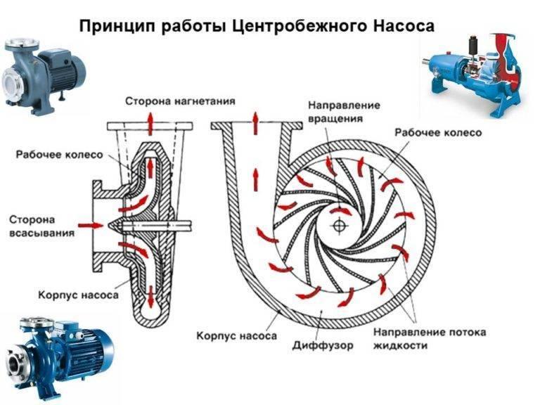 Центробежные насосы: принцип работы, конструкция и классификация по типам