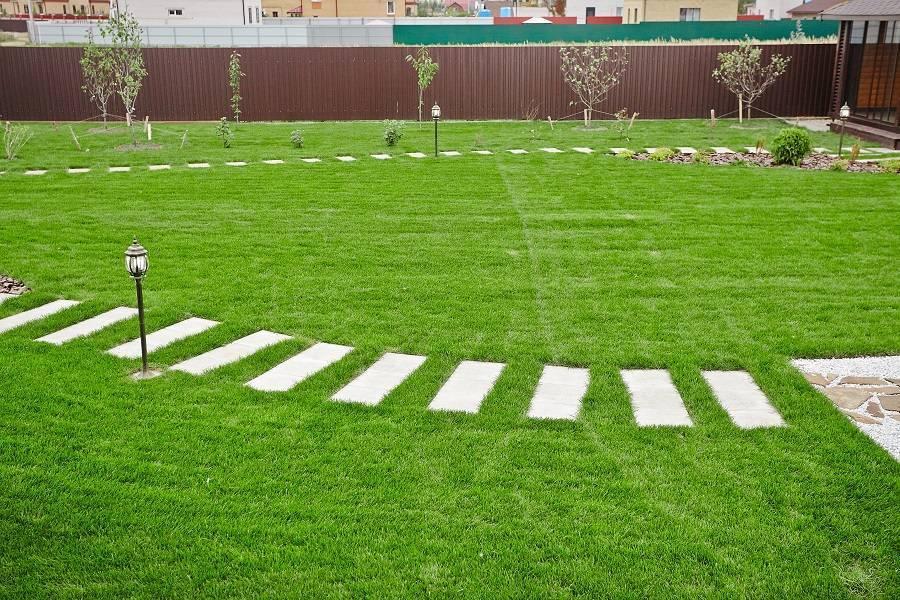Как правильно посадить газонную траву на участке: советы от профессионалов