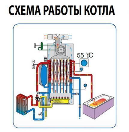Котел газовый двухконтурный напольный, какой выбрать?