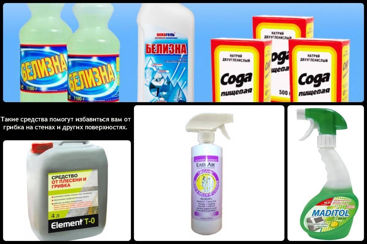 Как избавиться от плесени в ванной: народными и магазинными средствами