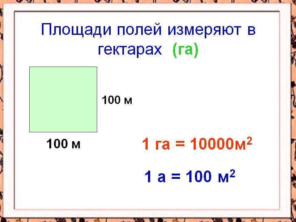 1 сотка это сколько метров в длину и ширину