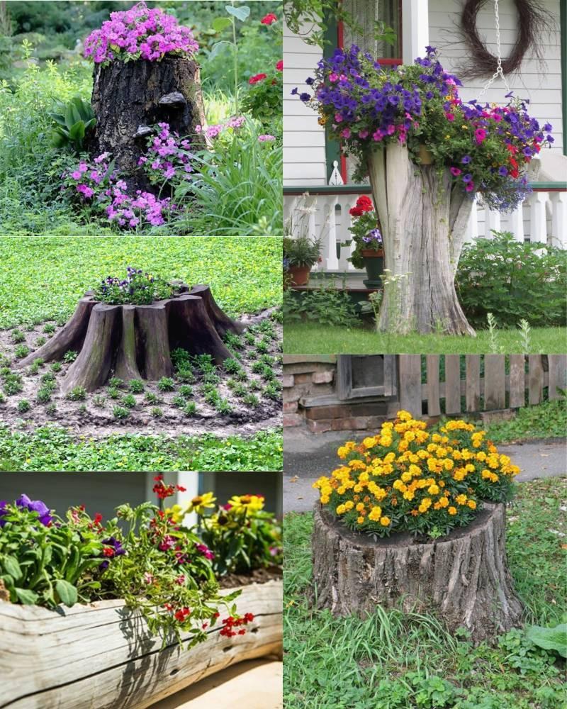 Как красиво оформить клумбу непрерывного цветения своими руками | дизайн участка (огород.ru)