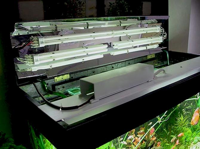 Зачем нужен светильник светодиодный для аквариума и как установить?