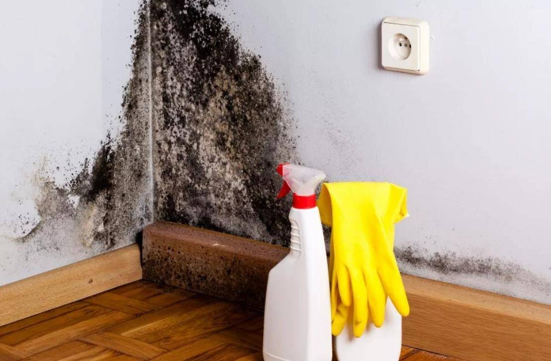 Как избавиться от плесени в ванной и поддерживать гигиеничность помещения
