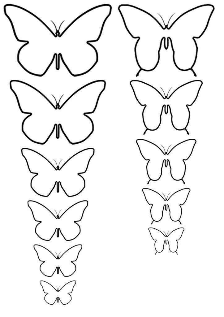 Декор бабочками на стене: делаем своими руками