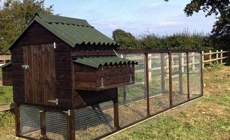 Как построить летний курятник своими руками за несколько дней | дела огородные (огород.ru)