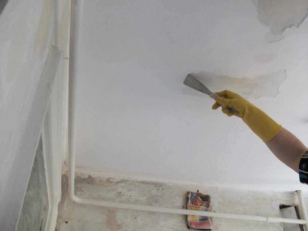 Покраска потолка водоэмульсионной краской своими руками без пятен, полос, разводов