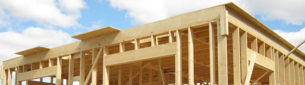 Бревно или брус - что лучше выбрать для строительства дома