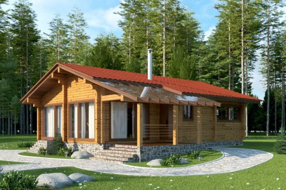 Финские дома — примеры, проекты и особенности постройки. 115 фото и видео особенностей дизайна