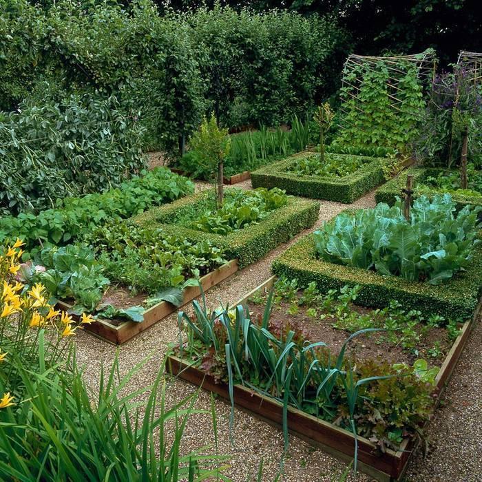 Огород без хлопот для пожилых. огород для ленивых и умных: как сделать удобные и урожайные грядки смотреть канал огород где все растет