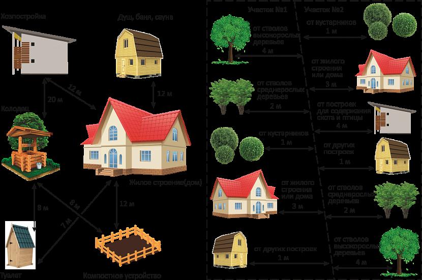 Посадка деревьев и кустарников. рекомендации и правила