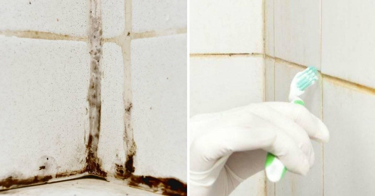 Как очистить ванную от опасной плесени: практические советы