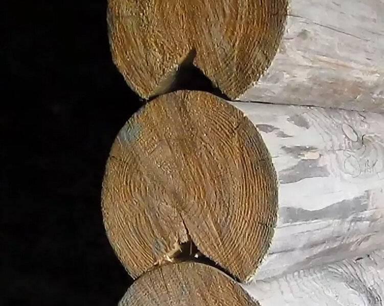 Технология финской рубки – особенности замка и паза, планировка сруба. что лучше-оцилиндрованное или рубленное бревно? оцб классический или финский профиль какой лучше