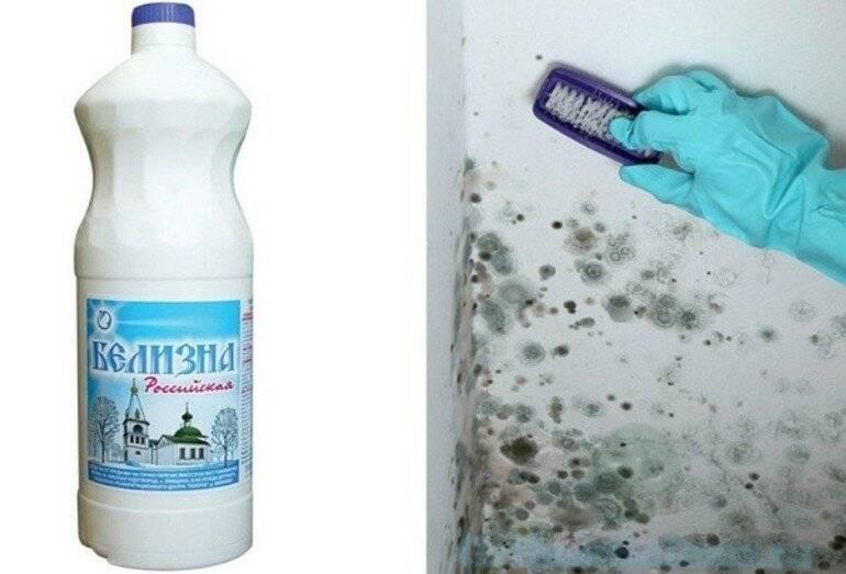 Грибок в ванной комнате: отчего появляется и как его удалить?