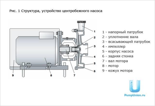 Самовсасывающий насос для воды: что это, как выбрать - vodatyt.ru