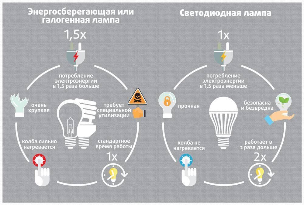 Энергосберегающая или светодиодная лампа: какую выбрать