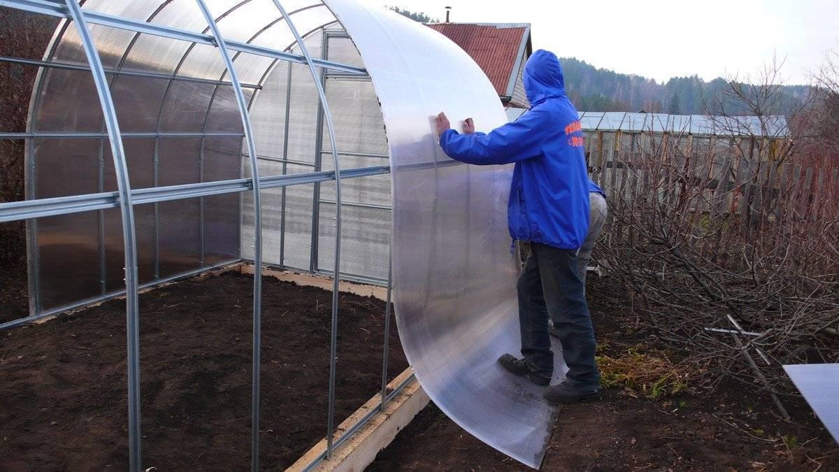 5 интересных идей, как построить зимнюю теплицу своими руками