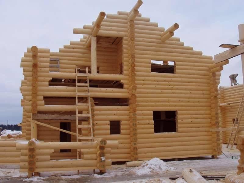 Какой деревянный дом лучше выбрать. плюсы и минусы.