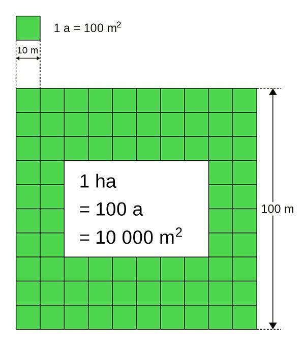 Как рассчитать сотки земли на участке? чему равна сотка?