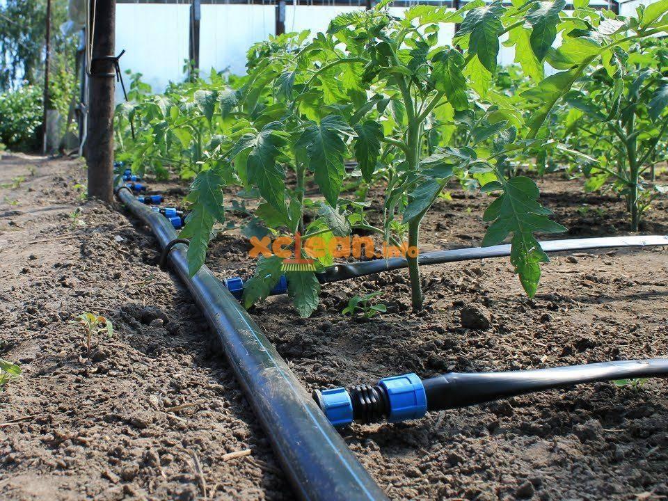 Капельный полив из полипропиленовых труб своими руками: создание системы для сада на даче, орошение грядок с помощью изделий из полипропилена
