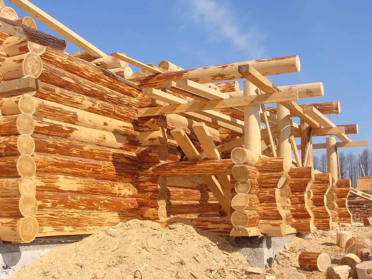 Как сделать надежный дом из рубленного бревна?