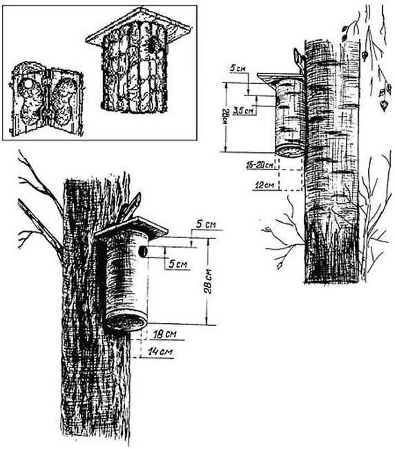 Скворечник своими руками (36 фото): как сделать его из подручных материалов? пошаговая инструкция, размеры и чертежи домиков для скворцов
