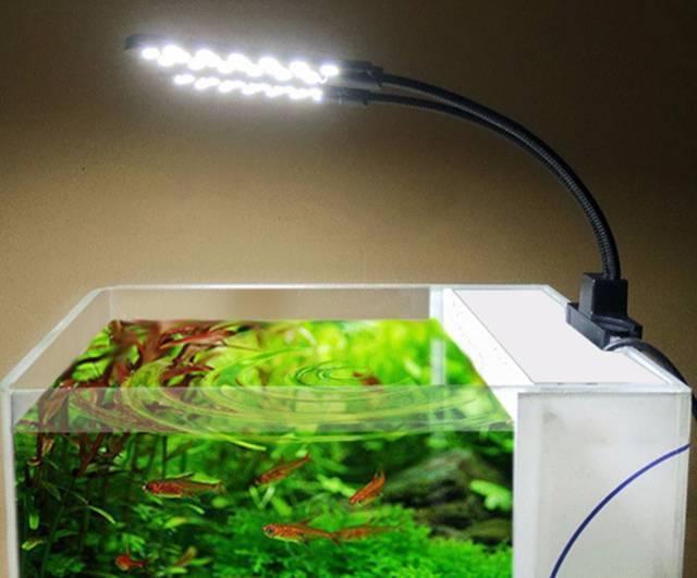 Самодельный ультрафиолетовый стерилизатор для аквариума своими руками (фото, мастер-класс, пошагово)