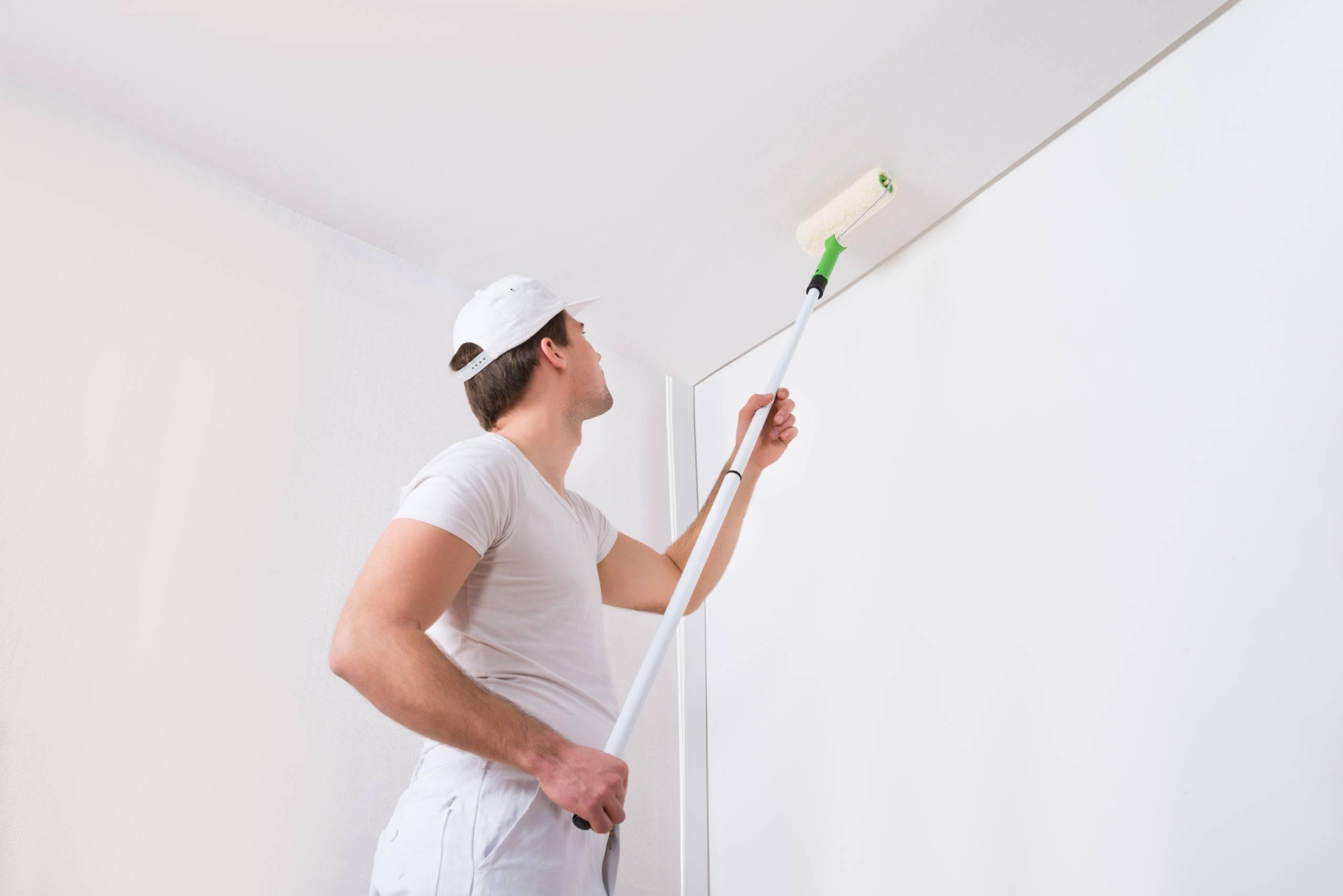 Какой краской покрасить стены из гипсокартона внутри комнаты