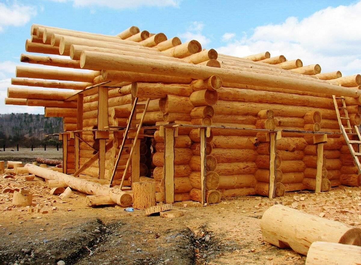 Сруб дома своими руками. подготовка участка под сруб. выбор и подготовка бревна сруба. | строй сам