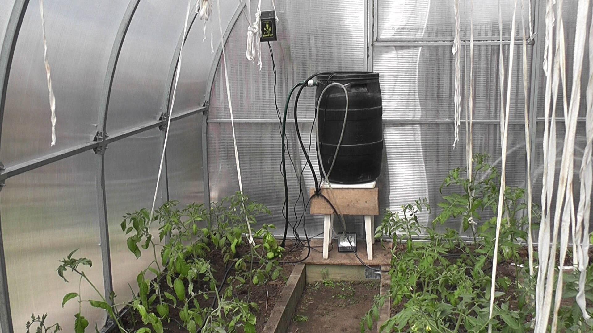 Автоматический полив для теплицы: виды систем