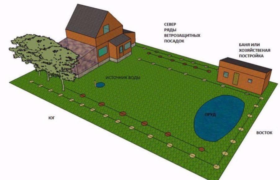 Как правильно расположить дом на участке по сторонам света?