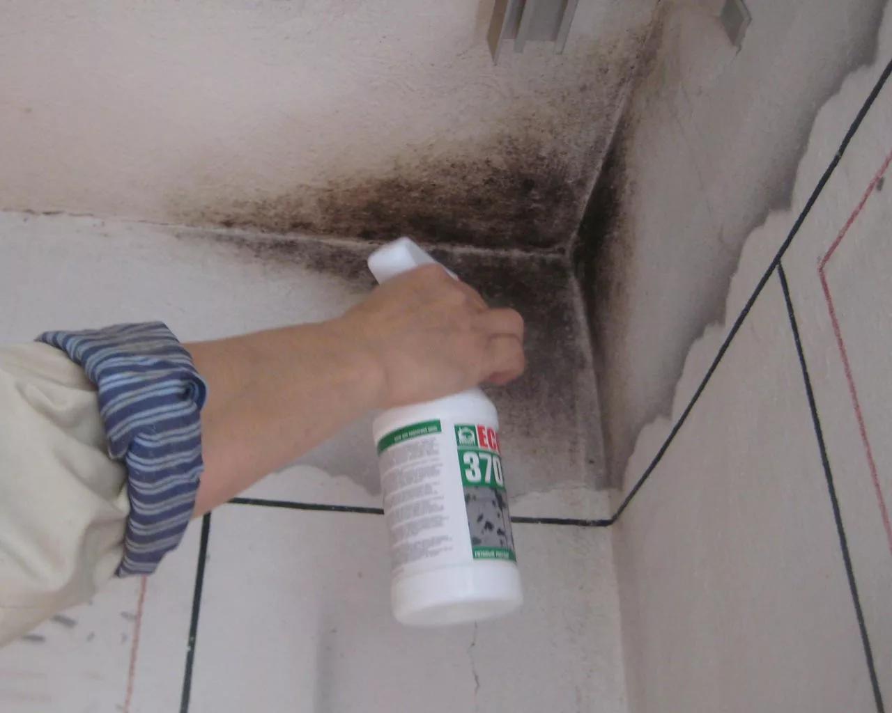 Как избавиться от грибка и удалить плесень в квартире на потолке