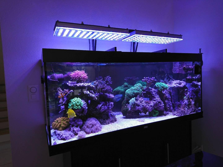 Как сделать светодиодную подсветку аквариума?