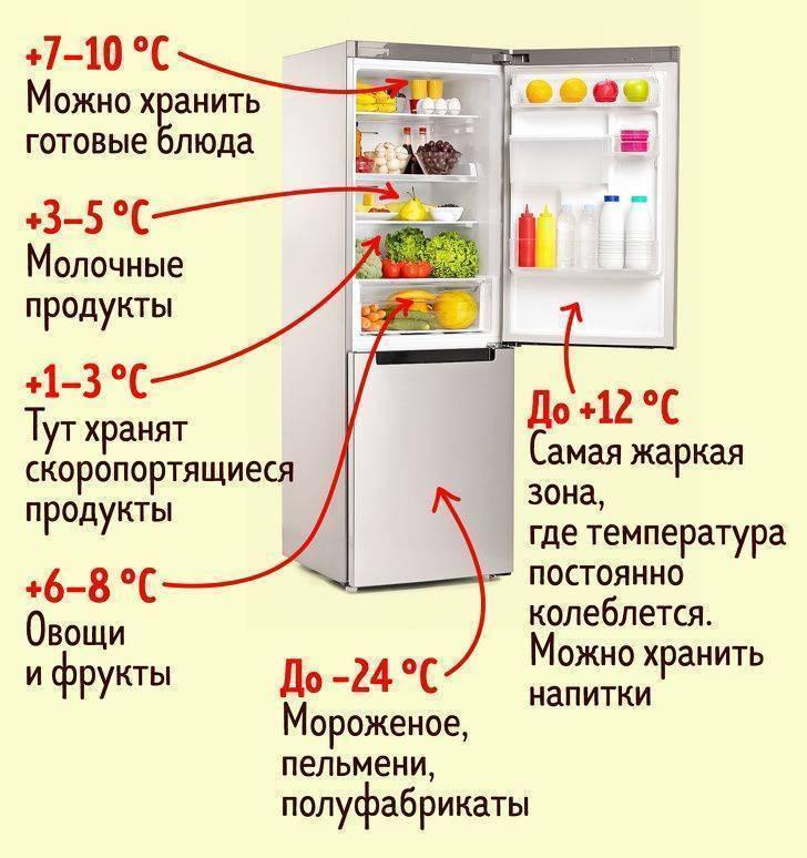Какой должна быть оптимальная температура холодильника: в морозильной камере, на дверце