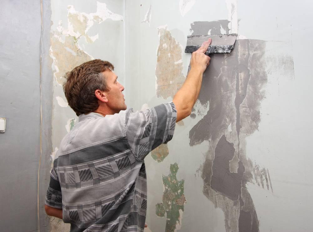Шпаклевание стен своими руками, технология процесса