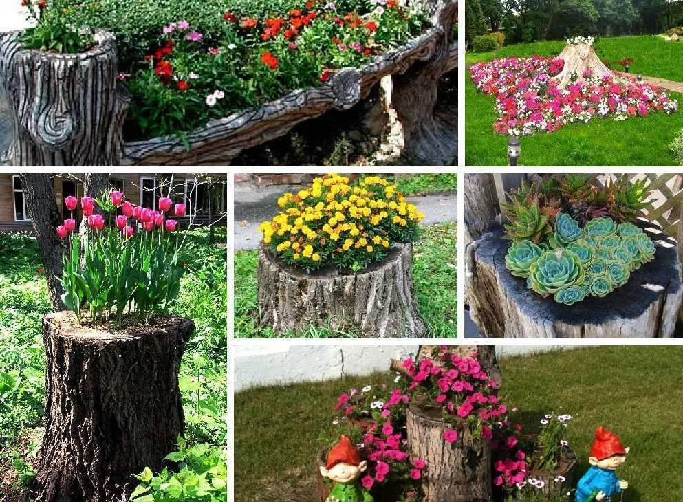 Клумбы своими руками — как сделать простые и красивые клумбы на участке и в саду? 95 фото лучших идей и решений