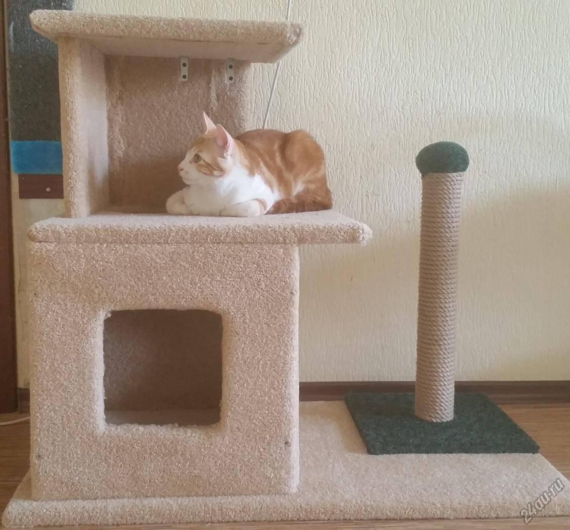 Как сделать домик для кошки своими руками в домашних условиях
