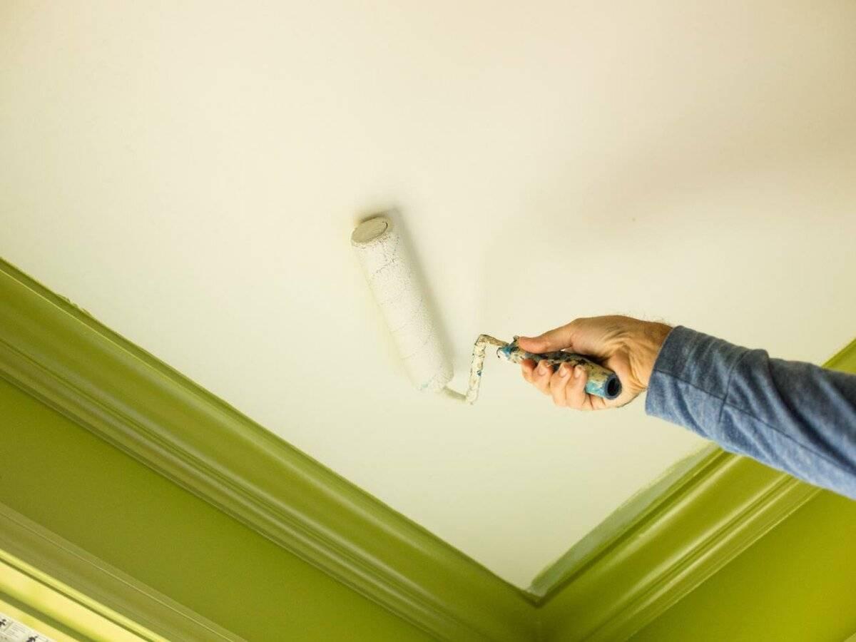 Как покрасить потолок - 100 фото подбора красок и оптимальных сочетаний цвета